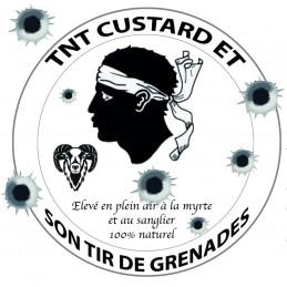TNT grenade