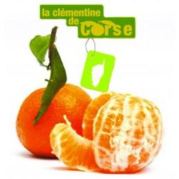 Clémentine Corse